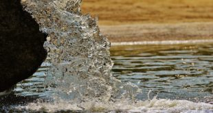 Fontaine à eau