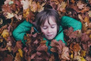 activités automne