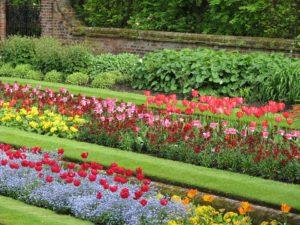 Parterres de fleurs en espaces publics
